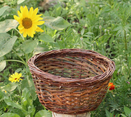 Wild Plum Hand Basket - SOLD OUT -