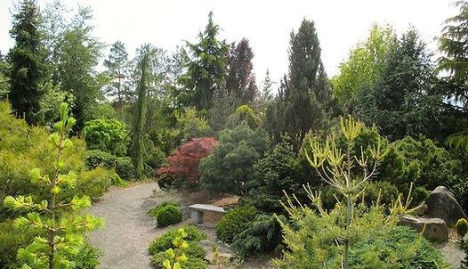 Coenosium Rock Garden at South Seatte College