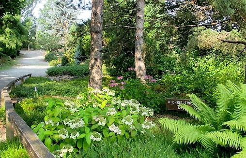 The H C Erickson Garden - Arboretum at South Seattle College