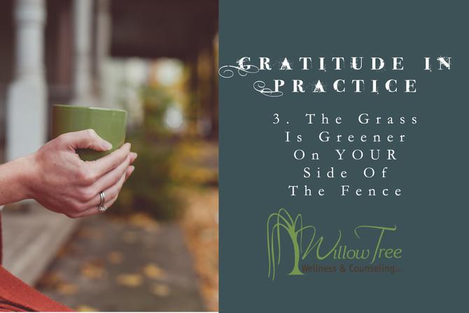 Gratitude in Practice: Week 3
