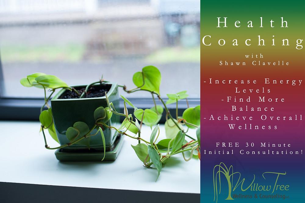 health coaching sc 1.jpg