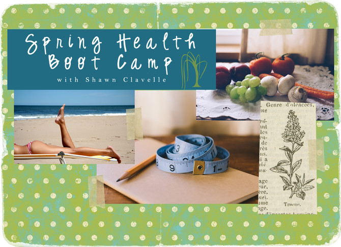 Spring Health Boot Camp