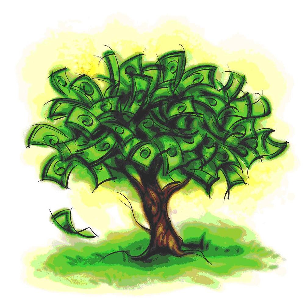 Money_tree-4.jpg