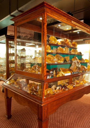 The Kauri Museum Collection