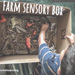 Farm sensory box!
