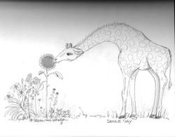 DD giraffe 7-17.jpg