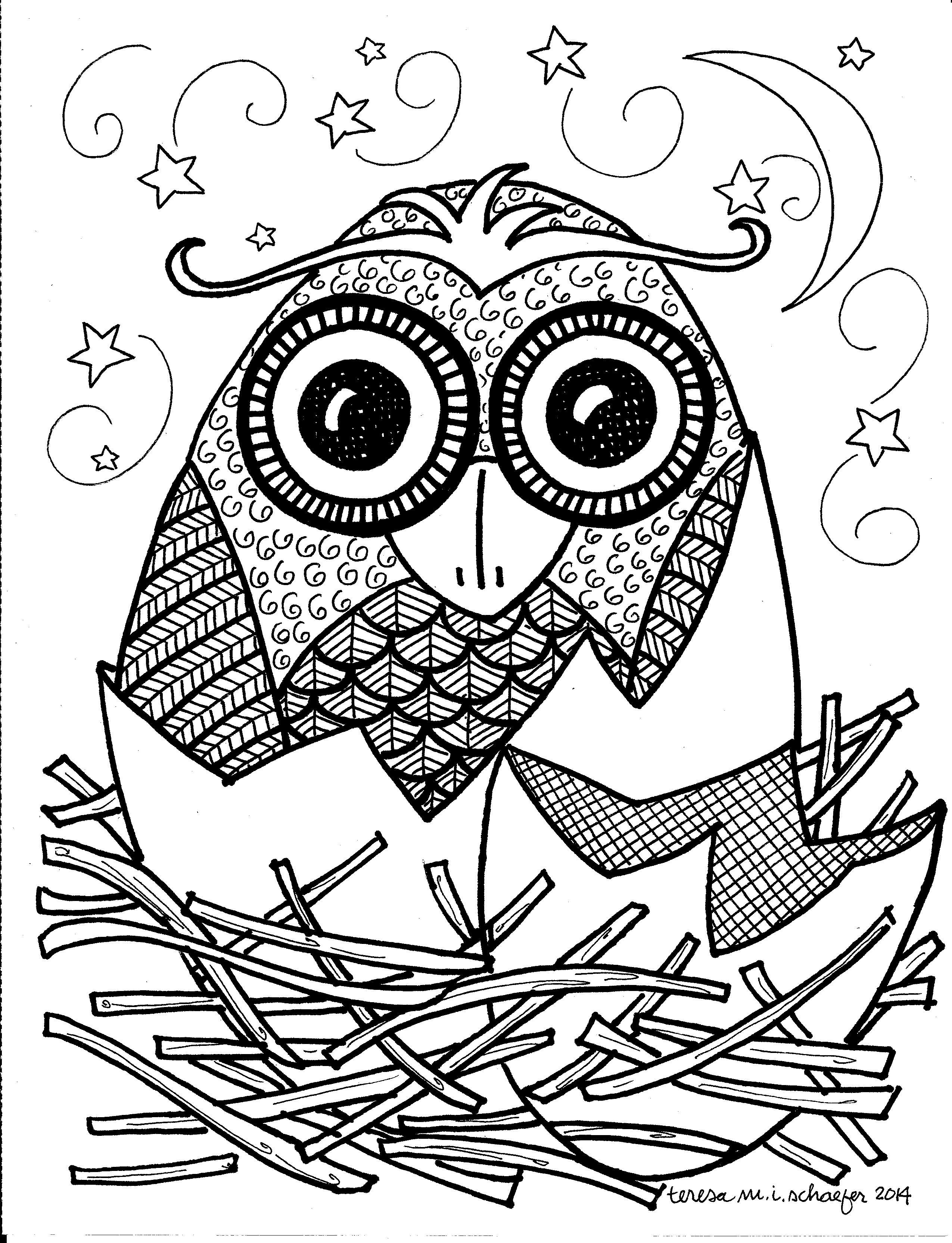 owl da.jpg