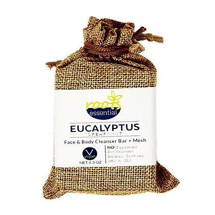 Eucalyptus Spearmint FACE & BODY CLEANSER BAR (VEGAN) + Mesh Scrub