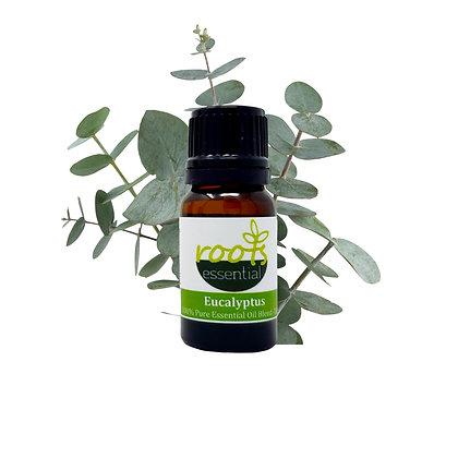Eucalyptus (24) 10 ML