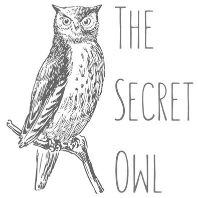 Why The Secret Owl