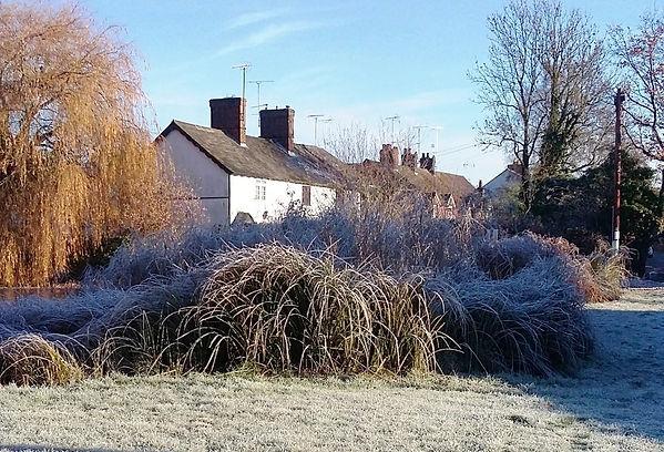 Woolmer Green pond in winter