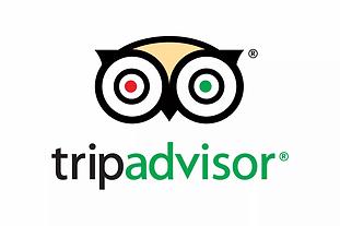 TripAdvisor.0.webp
