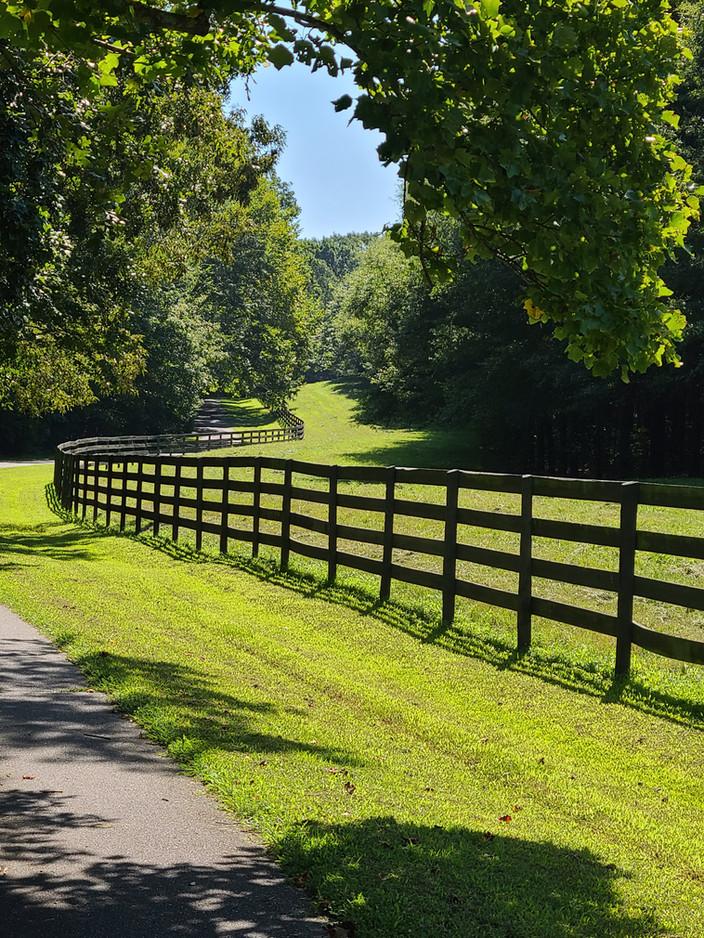 Meadowbrook Tree Farm