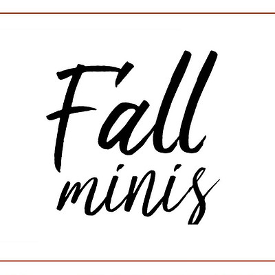 2019 Fall Mini's