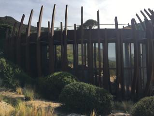 Besuch des Weingutes Lapostolle/Clos Apalta im Valle Colchagua