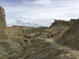 Sarmiento und das Tal der versteinerten Wälder