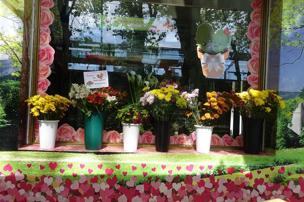 überall Blumen, Blumen, Blumen.....