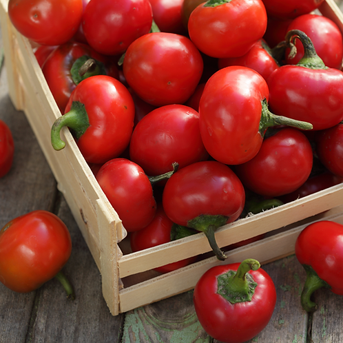 Red Cherry Sweet Pepper - 50 Seeds