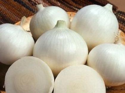 White Sweet Spanish Onion - 250 Seeds