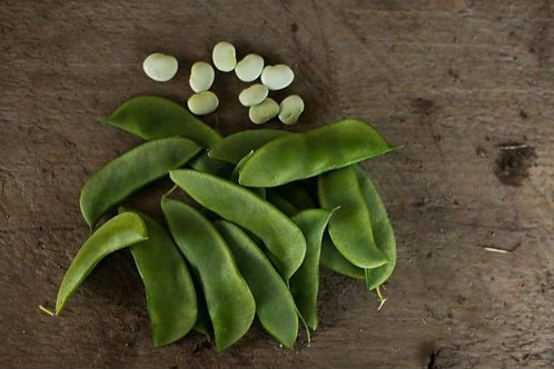 Henderson Lima Bean - 30 Seeds