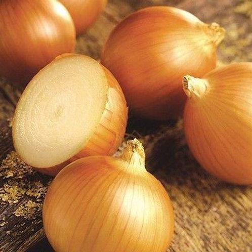 Walla Walla Onion - 100 Seeds