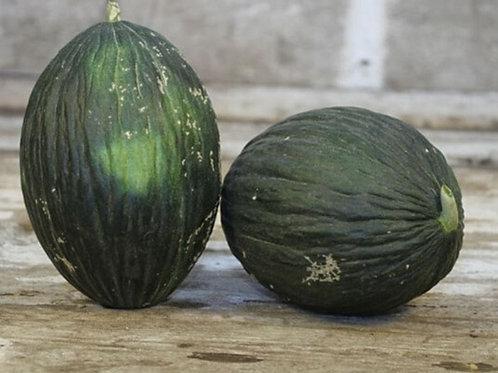 Late Valencia Melon - 50 Seeds