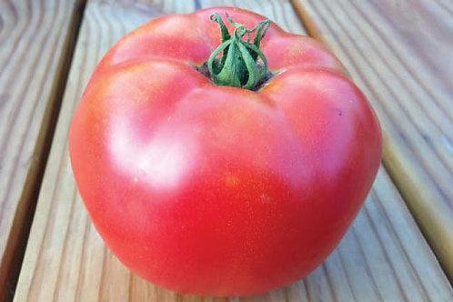 Rutgers Tomato - 50 Seeds