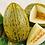 Thumbnail: Piel De Sapo Cantaloupe - 25 Seeds
