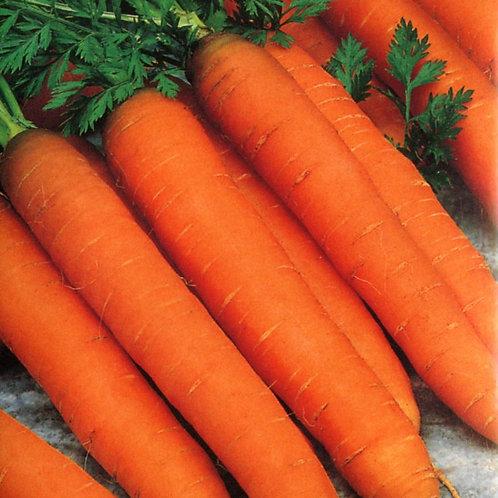 Romance Carrot - 500 Seeds