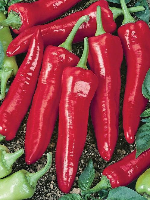 Hot Big Jim Pepper - 150 Seeds