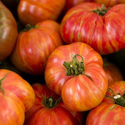 Beefsteak Rainbow Tomato - 50 Seeds