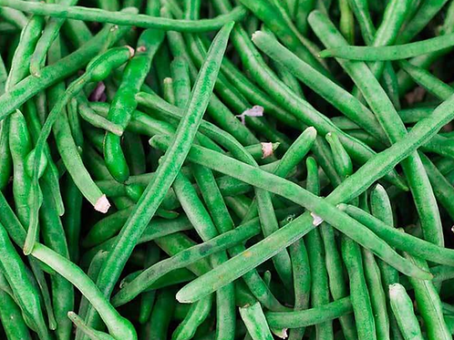 Jade Bush Bean - 200 Seeds