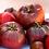 Thumbnail: Purple Cherokee Tomato - 25 Seeds