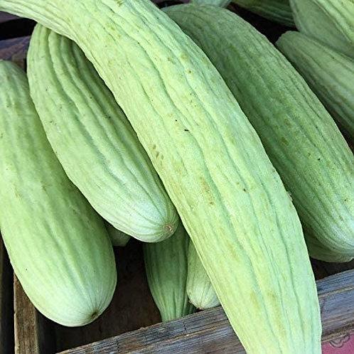 Metki Pale Green Armenian Yard-Long Cucumber - 40 Seeds