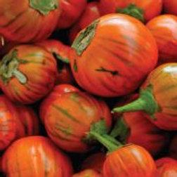 Turkish Orange Eggplant - 30 Seeds