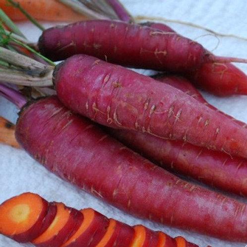 Dragon Carrot - 250 Seeds