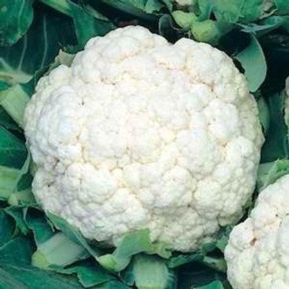 All Year Round Cauliflower - 300 Seeds