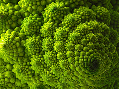 Romanesco Broccoli - 300 Seeds