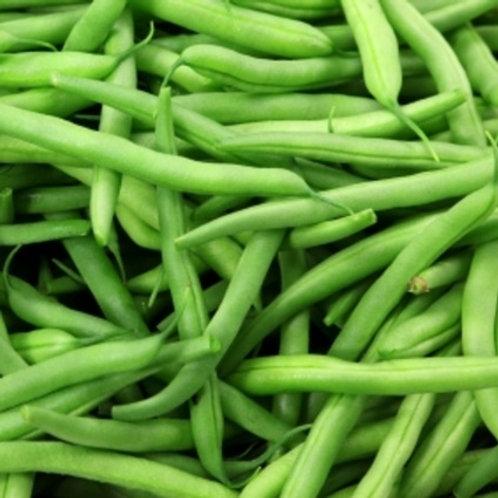 Tendergreen Bean - 50 Seeds