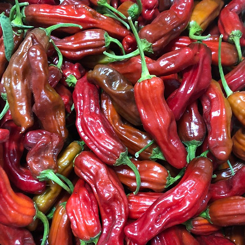 Shishito Hot Pepper - 25 Seeds