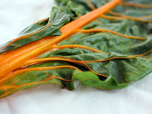 Orange Swiss Chard - 100 Seeds