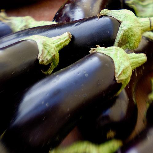 Florida Market Eggplant - 75 Seeds