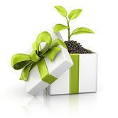 gift-image1.jpg