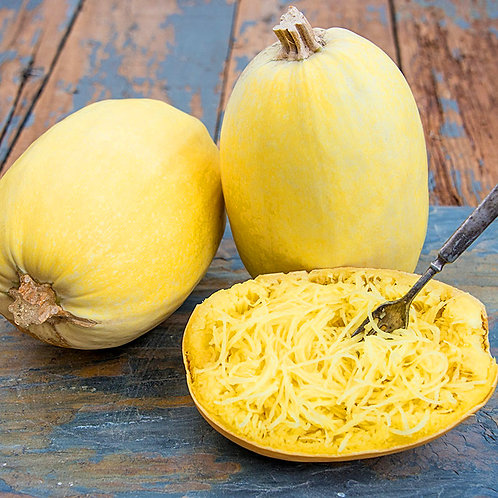 Vegetable Spaghetti Squash - 30 Seeds