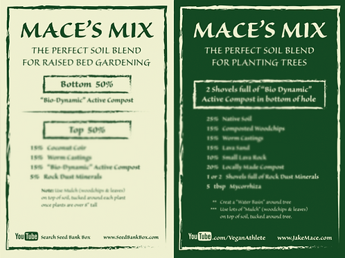 Digital Copy - Mace's Mix Card