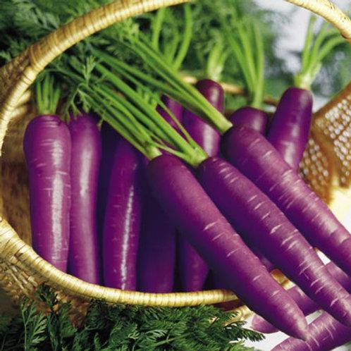 Cosmic Purple Carrot - 1000 Seeds