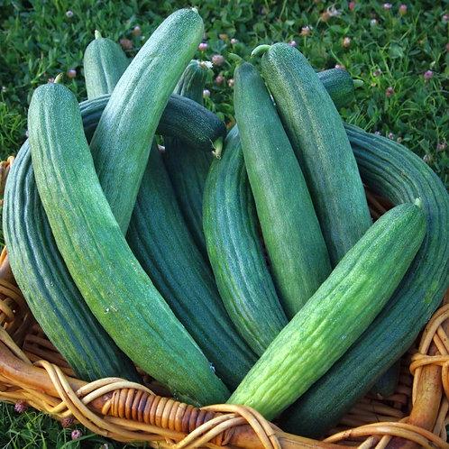 Dark Armenian Cucumber - 30 Seeds