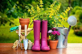garden_tools_507544497.jpg