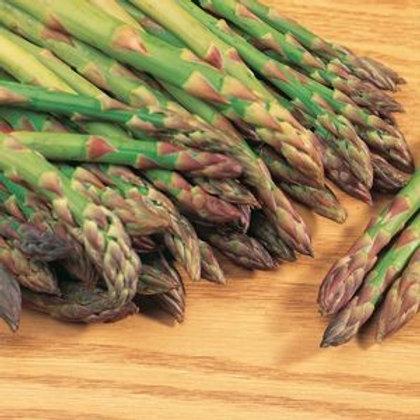 Mary Washington Asparagus - 100 Seeds