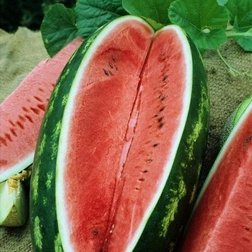 Jubilee Watermelon - 25 Seeds